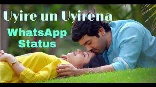 Uyire un Uyirena | WhatsApp Status | Zero