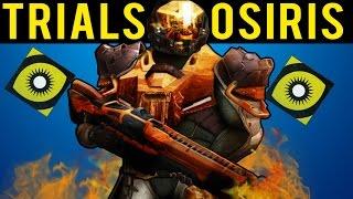 Took Real War Veteran Flawless in Trials of Osiris! (Destiny Lighthouse)
