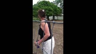 A pony and a horse mating