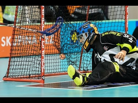 WFC 2013 - NOR v SUI Highlights