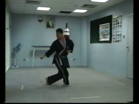 Okinawa-Te   Karate-do ninth video