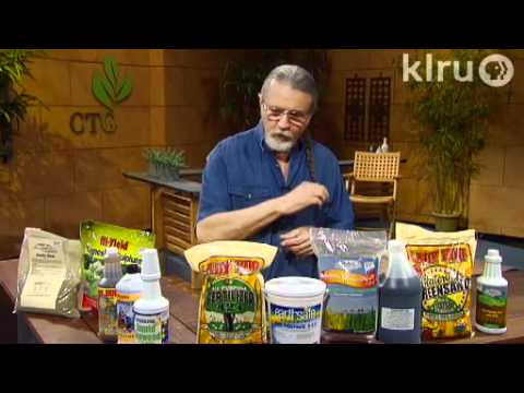 Feeding plants naturally|John Dromgoole|Central Texas Gardener