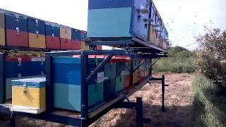 Μελισσοκομικό τρέιλερ ΣΠΆΡΤΗΣ!!!
