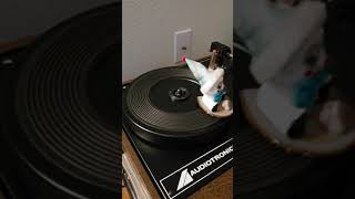 Danny Likes His Turntable width=