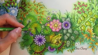 getlinkyoutube.com-SECRET GARDEN | Prince Frog's Magical Pond | Coloring With Colored Pencils