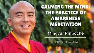 getlinkyoutube.com-Mingyur Rinpoche ~ Calming the Mind: The Practice of Awareness Meditation