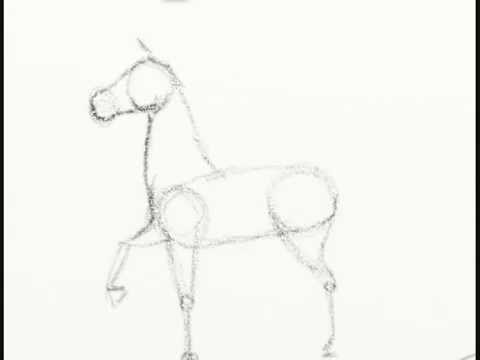 Como Dibujar Un Caballo Facilmente - How To Draw A Horse Tut