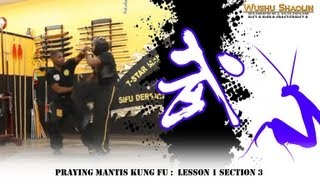 getlinkyoutube.com-Praying Mantis Kung Fu Tutorial Beng Bu 崩步  : Lesson 1 Section 3