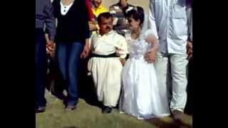 getlinkyoutube.com-بوك و زاوا كورته باله اجمل فرحة للعروسيين