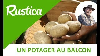 getlinkyoutube.com-Des pommes de terre sur le balcon
