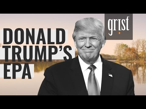 What does a Donald Trump EPA look like?
