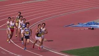 getlinkyoutube.com-2013/6/23 男子800m決勝 大激戦! 日本学生陸上競技個人選手権