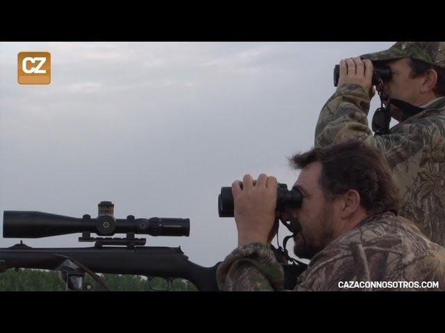 Caza de corzos a larga distancia: abate a 1000 metros