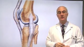 getlinkyoutube.com-12 Lesión del Ligamento Lateral Interno