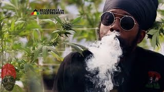 getlinkyoutube.com-Ras Attitude - Marijuana (We Ah Bun) [Official Video 2016]