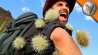 EXTREME Cactus Attack! width=