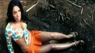getlinkyoutube.com-Mallika Sherawat tribute part1