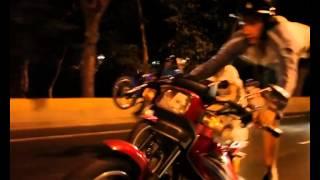 getlinkyoutube.com-moto piruetas con el perro ... noche de perros 2