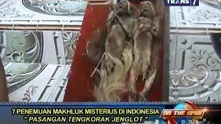 getlinkyoutube.com-On The Spot - 7 Penemuan Makhluk Aneh di Indonesia