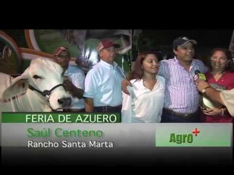 AGRO Y MAS RPC TV 26 5 2013