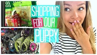 getlinkyoutube.com-SHOPPING FOR THE PUPPY