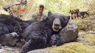 getlinkyoutube.com-Idaho Black Bear Hunt