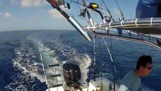 getlinkyoutube.com-Pulley Ridge on a 22 Foot Panga Overnight Fishing (Fast Ver)