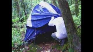 getlinkyoutube.com-富士樹海でテント発見!! その中に....サイレント