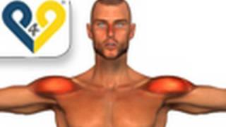 Ejercicios Hombros: Elevaciones laterales con mancuernas