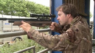 getlinkyoutube.com-The Airgun Show – hunting doves, feral pigeons and rats on the farm, plus the Cometa Orion BP bullpu