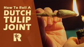 getlinkyoutube.com-How To Roll A Dutch Tulip Joint: Cannabasics #21