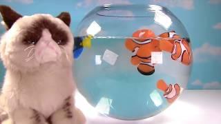 getlinkyoutube.com-Disney Finding Dory Toy Surprise Boxes! Swimming Dory, Nemo & Marlin! Mashems!
