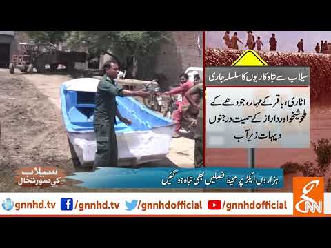 Flood in river Sutlej and Sindh destroyed crops