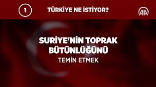 Türkiye Barış Pınarı Harekatı'nı neden başlattı?