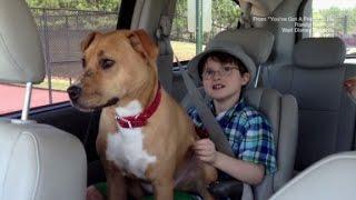 getlinkyoutube.com-Autistic Boy & Rescue Dog Bond