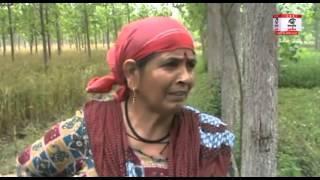 आदमखोर गुलदार ने किसान पर किया हमला, खेतों में मिला गुलदार का शव