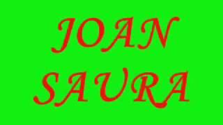 JOAN SAURA I L'ESTATUT