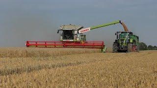 getlinkyoutube.com-Der Neue Claas Lexion 770 mit Vario 1230 in der Getreideernte / Barley Harvest 2015