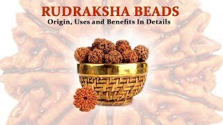 Rudraksha beads: Origin, Uses and Benefits In Details