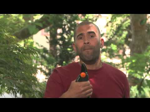 Gardening with Ease with Fiskars and Ahmed Hassan