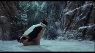 Pinguin VS. Leonidas (from Meet The Spartans)