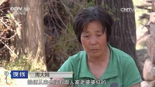 getlinkyoutube.com-两双鞋一条命【夜线  20161205】