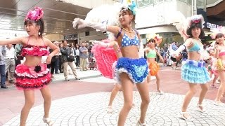getlinkyoutube.com-神戸サンバチーム・2016神戸まつり PRキャラバン隊 パレード