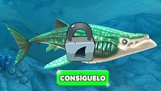 getlinkyoutube.com-Hungry Shark World Desbloqueando al Tiburón Ballena