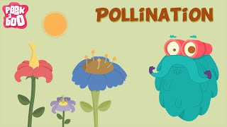 Parts of a flower and Pollination | The Dr. Binocs Show | Learn Videos For Kids
