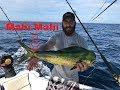 Offshore Fishing Florida   20 miles E. of Sebastian inlet
