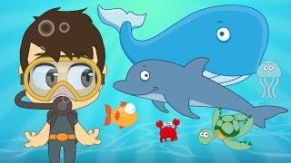 getlinkyoutube.com-Aquatic Animals for Kids in Arabic - الحيوانات للأطفال - حيوانات البحر باللغة العربية للاطفال
