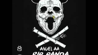 getlinkyoutube.com-Anuel AA - Rip Panda ( Official Audio)