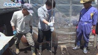 getlinkyoutube.com-学生と地域住民が井戸掘り 茨城町
