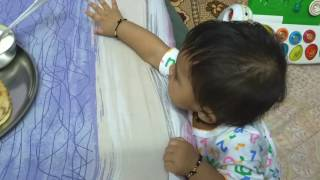 Baby Cheeku pulling the dinner plate [ Funny ]